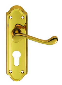 Ashtead Lever on Euro Lock Backplate